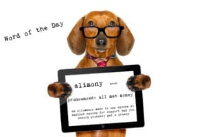 alimony can be included in a prenup